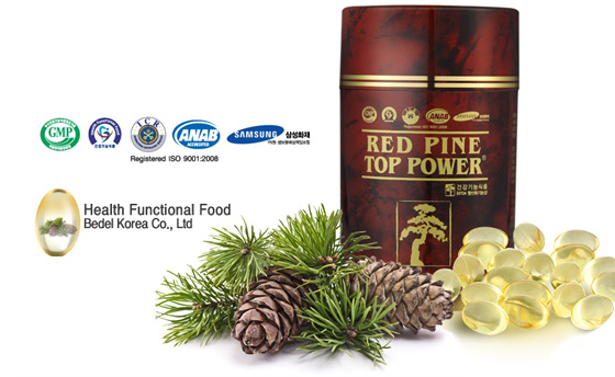 Native korean pine tree red pine tree by steam distillation method