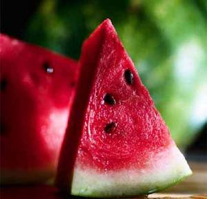 Wholesale melon: Water Melon