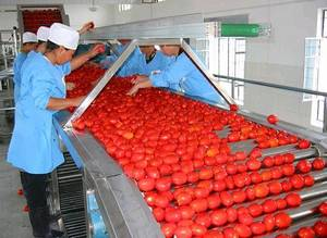 Wholesale chinese translator: tomato Paste Processing  Machinery
