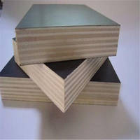 Good Quality Exterior Marine Grade Construction Plywood From Xzuhou Guangda W