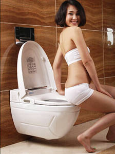 Wholesale auto body cleaning toilet: Wall Hung Toilet