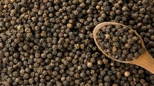 Wholesale spice: Spice : Pepper, Cassia, Coffee Beans, Cashew Nut, Tapio Starch