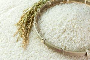 Wholesale Rice: Rice