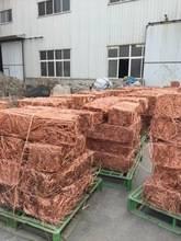 Wholesale mill berry copper scrap: Pure Copper Wire Scrap Mill Berry 99.9%
