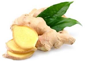 Wholesale Fresh Ginger: Fresh Ginger