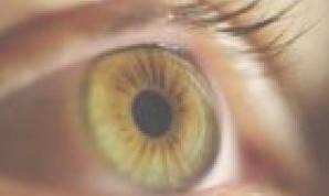 Wholesale cas no 9004 32 4: Eye Surgery Viscoelastic Hyaluronic Acid Gel Filler