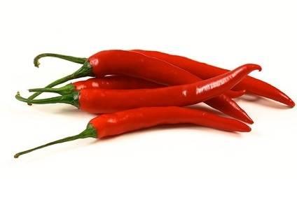 korea food: Sell Fresh chilli from Vietnam (+841642828779)