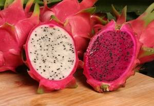 Wholesale packing box: Fresh Dragon Fruit
