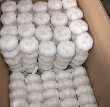 fresh fruit: Sell Natural white garlic fresh garlic onion garlic fruits vegetable for sale