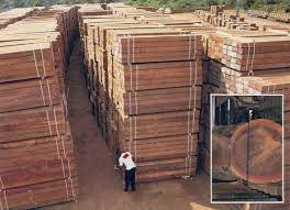 Wholesale Timber: Timber Solid Wood Boards Wood (Azobe,Bobinga,Camwood,Iroko,Sapelite Eboney) for Sale