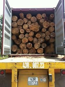 Wholesale Timber: Teak Logs