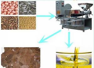 Wholesale oil expeller: Automatic Screw Oil Press