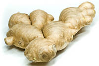 High Quality Fresh and Dried Ginger for Sale