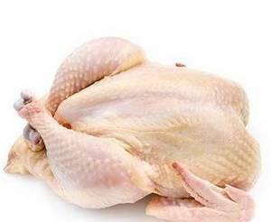 Wholesale export: Bulk Frozen Whole Chicken for Export