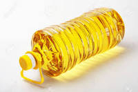 Sassafras Oil