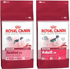 Wholesale dog food: Royal Canin Maxi Adult Dog Food for Large Dogs