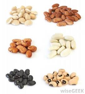 Wholesale lighting: Black Bean / Light Speckled Kidney Bean / Black Matpe Bean