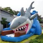 Sell Inflatable Slide Shark, Giant Slide Inflatables