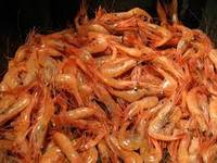 Sell High Quality Frozen River Shrimp