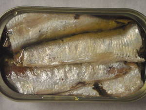 Wholesale frozen oyster: Canned Sardine