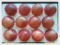 Sell [Fruit-Vegetables] Fresh Apples for Export