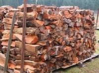 Sell Firewood (Oakm Cypress,Bush) Charcoal for Winter