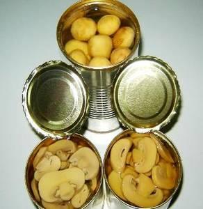 Wholesale Canned Vegetables: Champignon Mushroom Preserved in Brine