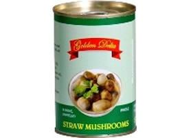 Wholesale Canned Mushrooms: Salty Peeled Straw Mushroom