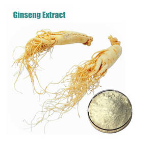 Wholesale ginseng extract: Panax Ginseng Root Extract 80%