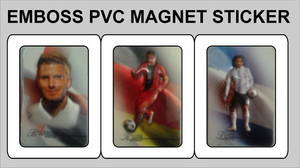 Wholesale Other Advertising Services: Emboss PVC Magnet Sticker