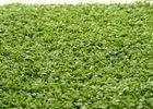 Wholesale Other Garden Supplies: Monofil PE Yarn Hockey Decorative Fake Grass Carpet 220 S/m Stitch 6600 Dtex