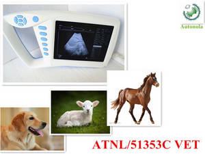 Wholesale sexs video 18 to 19: Mini B-Ultrasound Diagnostic System with Different Kinds of Probes -Homestick\ Livestock
