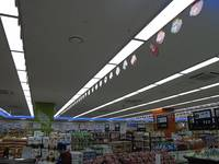 LED Slim Panel Lights 2