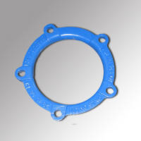 Ductile Cast Iron Gland Ring