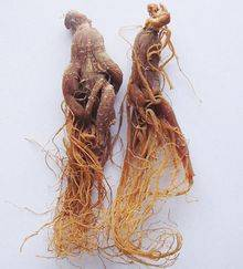 Wholesale ginseng extract: Ginseng Extract New Produced Manufacturer Price Felix@Scqqbio.Com