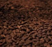 Grape Seed Extract   Manufacturer Direct Sale  Felix@scqqbio.Com