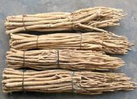 Astragalus Mongholicus Extract   Manufacturer Direct Sale  Felix@scqqbio.Com