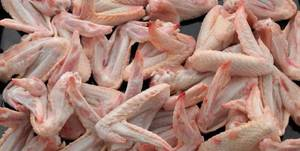 Wholesale chicken mid joint wing: Cheaper A Grade Halal Frozen Chicken Wings/Mid Joint/Tips BRAZIL ORIGIN