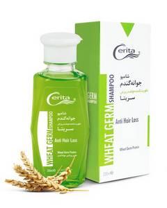 Wholesale b: Cerita Wheat Germ Shampoo