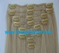 Clip-in Hair EXTENSION-100% Human HAIR-2