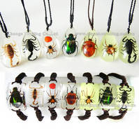 Hot Selling Souvenirs Wholesale Real Insect Jewelry