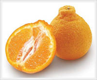 Sell Halrabong(Fruit, Citrus,Orange, Mandarin, Tangerine)