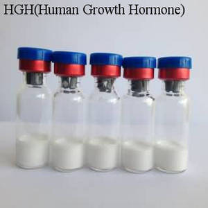 Wholesale full cell system: Human Growth Hormone, HGH Raw Material