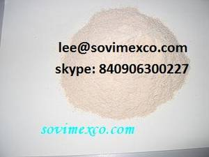 Wholesale Other Agriculture Products: Modified Starch