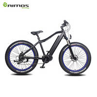 Mid Drive Max 250w 1000w Electric Fat Bicycle