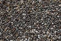 Sell Chia Seeds for Sale