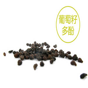Wholesale grape seed extract: Pure Grape Seed Polyphenol, High ORAC Grape Seed Extract Vitafenol
