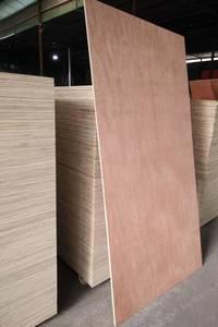 Wholesale sell: Sell: Natural Plywood Bintangor AA Grade