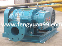 Fsr80g-300g High Pressure Blower