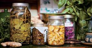Wholesale Herb Medicine: Natural Herbal Extract